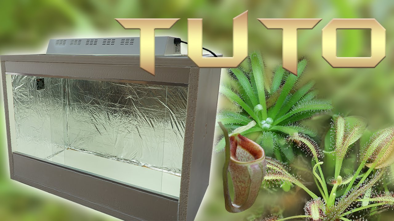tuto 23 terrarium pour plantes carnivores youtube. Black Bedroom Furniture Sets. Home Design Ideas
