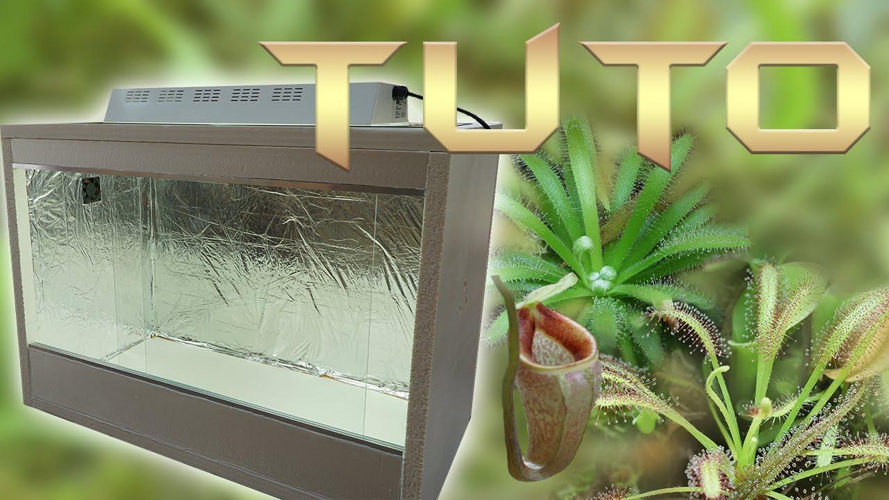 tuto 23 terrarium pour plantes carnivores youtube