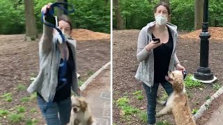 video: White woman calls police on African-American man after he asked her to put her dog on a lead