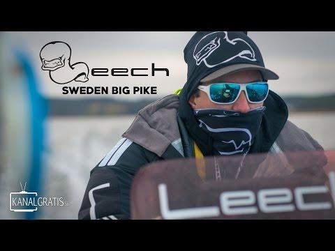 Leech TV - Sweden Big Pike - EPISODE 1 (English Subtitles)