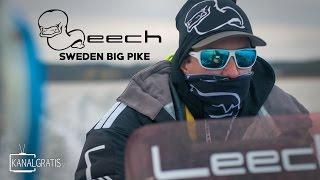 Leech TV - Sweden Big Pike - EPISODE 1