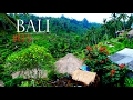 Travelling Indonesia - Bali Rice Terraces✔Backpacking Bali#03 German+English Subtitles