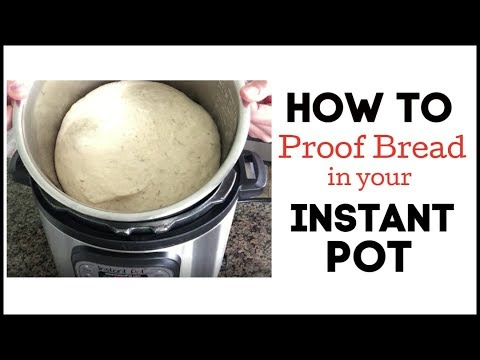 How To Proof Dough In Your Instant Pot
