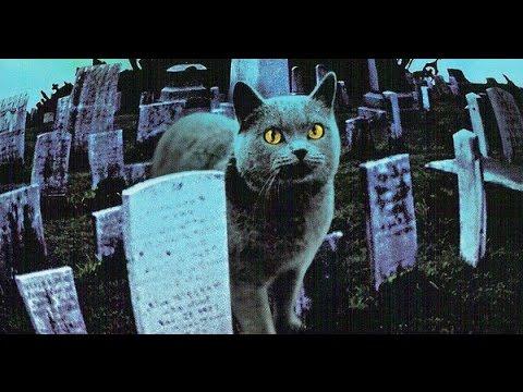 【猫片解说】阴阳之界不可破,复活之事不该有,关于买房的血泪教训《宠物公墓》