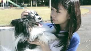 I&愛ピュア動画