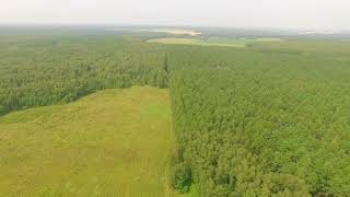 Дачный поселок «Лесная поляна-2»