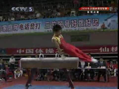 Zhang Hongtao PH EF 2010 XianTao Championship