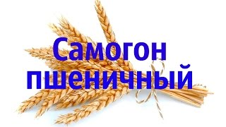Самогон из пшеницы. Пшеничный дистиллят.