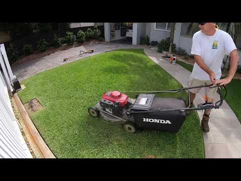 Lawn Mowing And Edging Grass