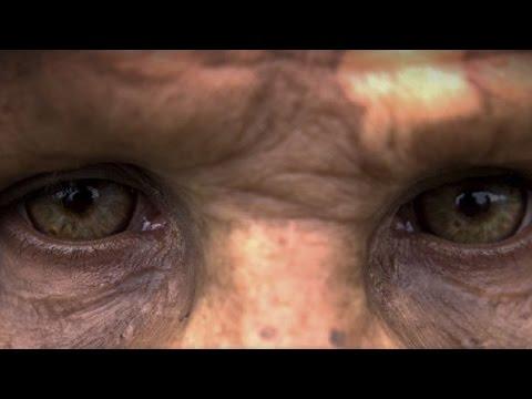 Premier Homme Le Film Qui Bouleverse L Histoire De Nos Origines
