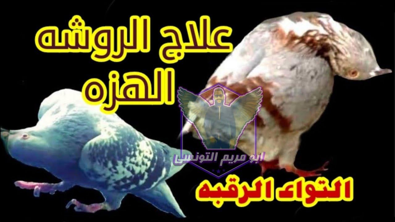 علاج الروشه والهزه في الحمام والفرق بينهم من ابومريم التونسي Youtube