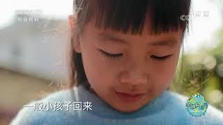 《地球村日记》 20200621 地球村3分钟Vlog:一口手工米饼就是家和幸福的味道|CCTV农业