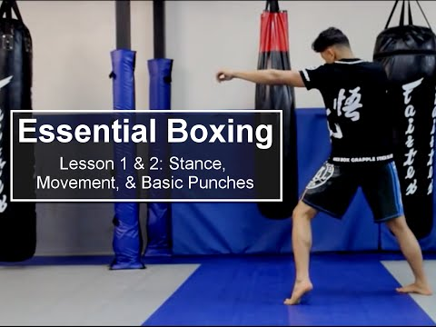 ESSENTIAL BOXING Lessons 1 & 2 | Masters Academy Plymouth