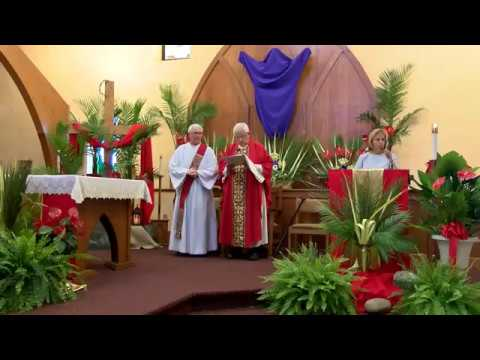 Palm Sunday of the Lord's Passion – A stunning Reversal of