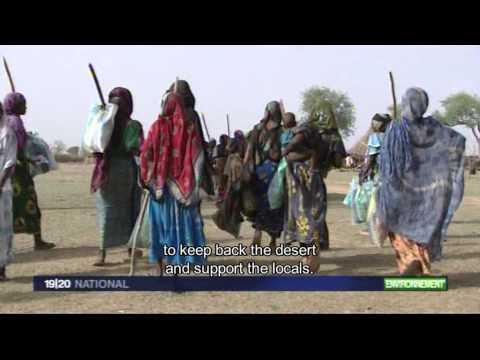 SOS SAHEL - Reportage France 3 - Acacia - ST