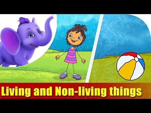 living-and-non-living-things-|-songs-on-learning-science-|-4k-|-appu-series
