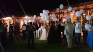 Запуск белых светодиодных шаров в небо на свадьбе в КСК Отрада от свадебного агентства Wedding Way