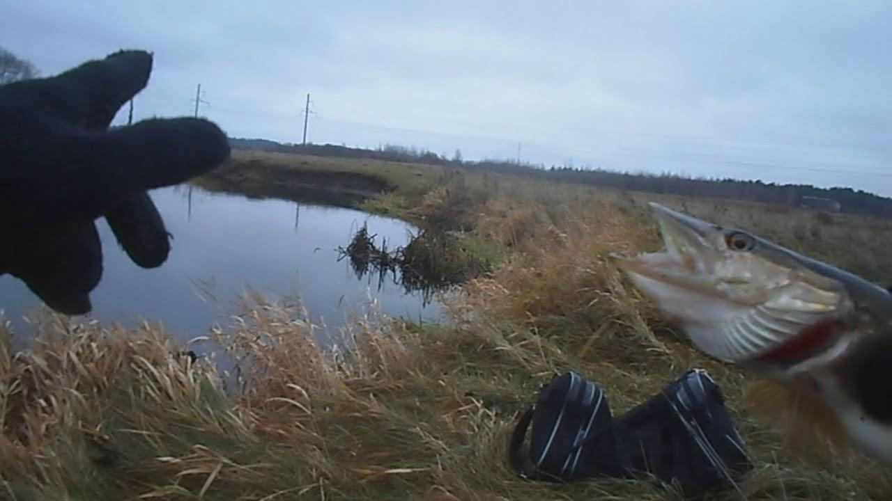 рыбалка в ноябре на реках