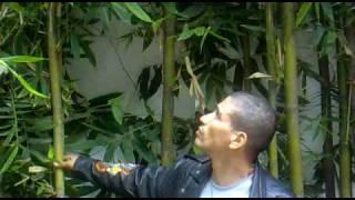 Lucha Libre AAA - En exclusiva Billy Boy Rapado - 2009