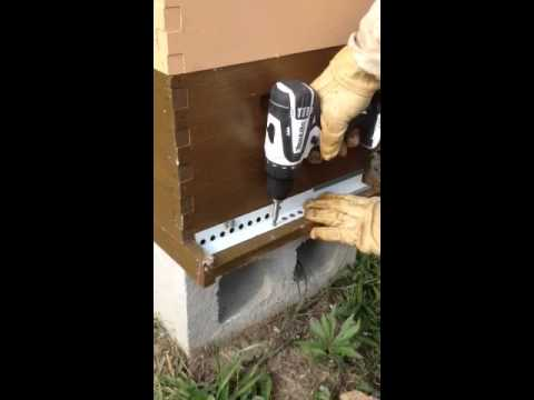 Installing a mouse guard on a bee hive