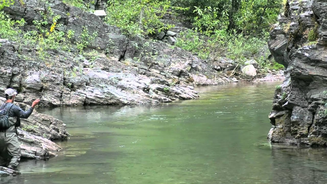 Red lightning fishing montana 39 s backcountry youtube for Backcountry fly fishing