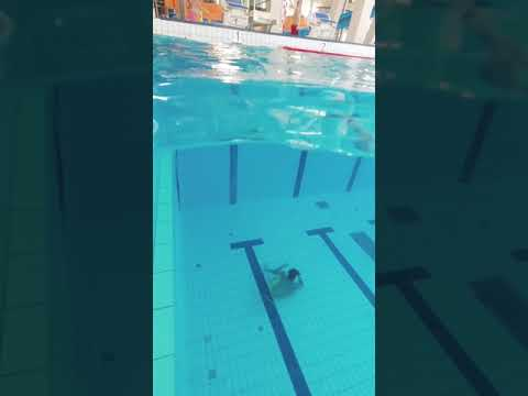Download Why you never dive into water without checking