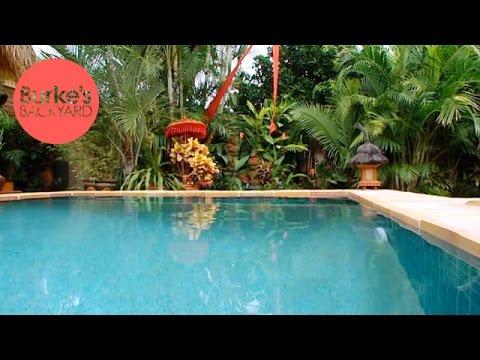 Burke's Backyard, Tropical Garden on a Budget - YouTube