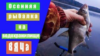 Осенняя рыбалка с фидером на водохранилище Вяча. Ловля пассивной плотвы осенью фидером.