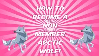 animal jam how to be a non member arctic wolf working 2016