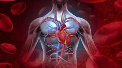 Blood Pressure Medications