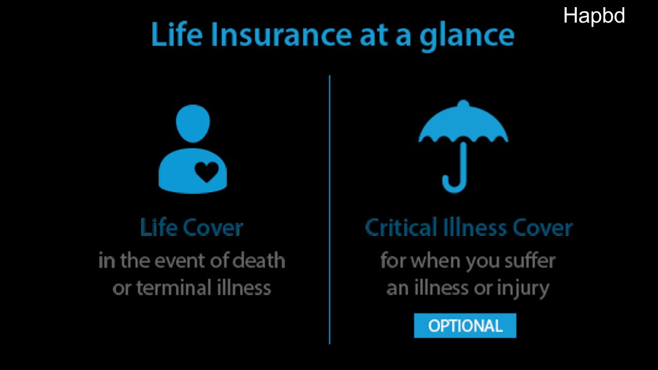 Free Term Life Insurance Quotes Llife Insurance Australia Discount Life Insurance Quotes Term