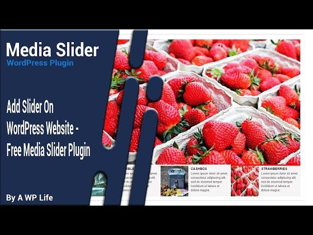 Media Slider 1