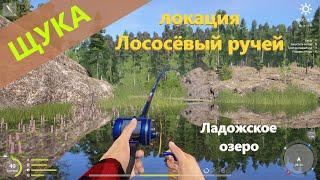 Русская рыбалка 4 - Ладожское озеро - Щука у ручья