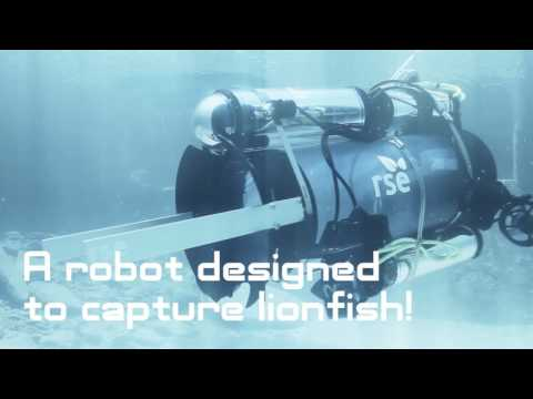 Help Protect Our Oceans | RSE - Robots in Service of the Environment
