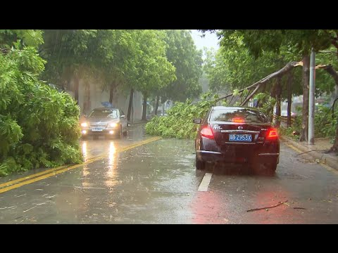 Typhoon Nida Wreaks Havoc in south China Cities