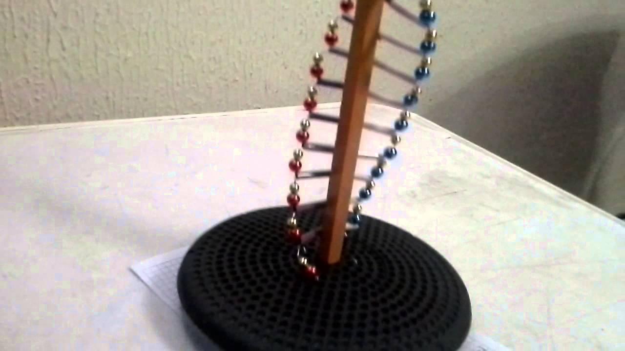 Maqueta deL ADN  Doovi