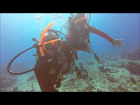 Scuba Diving in St. Lucia (10/16/2015)