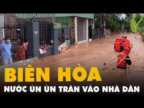 Biên Hòa: Mưa lớn khiến nước ùn ùn tràn vào nhà dân, nhiều tuyến đường ngập sâu