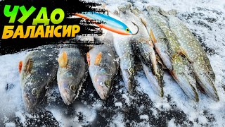 ЭТОТ БАЛАНСИР ТВОРИТ ЧУДЕСА ЛОВЛЯ ОКУНЯ ЩУКИ НА БАЛАНСИР ЖЕРЛИЦЫ зимняя рыбалка