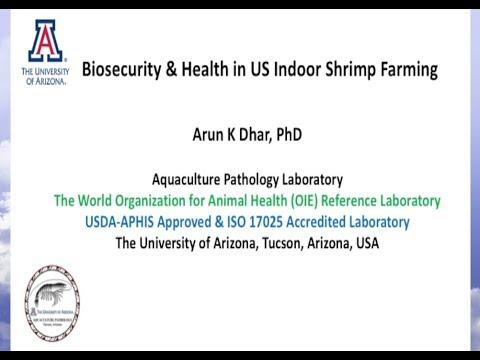 Biosecurity & Health in U S  Indoor Shrimp Farming by: Arun K Dhar Ph D
