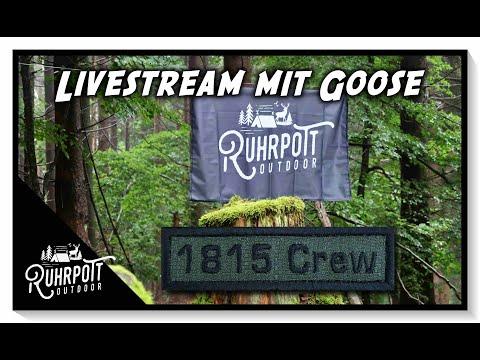 Spontaner Livestream mit Goose!