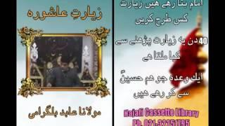 Ziyarat-e-Ashura ki fazilat - Maulana Abid Bilgarami