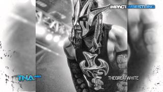 "2014: Willow (Jeff Hardy) 14th & New TNA Theme Song - ""Willow"