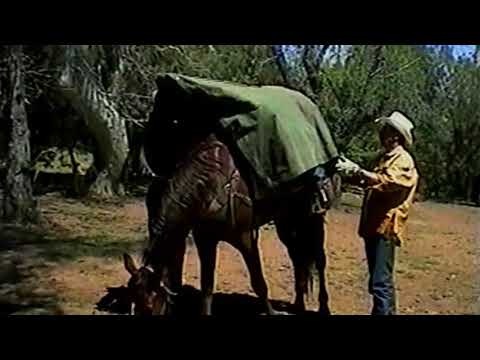 Lost Dutchman Gold Mine - Arizona Trail