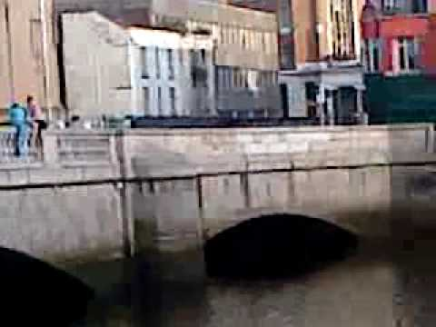 leon jumps in the liffey for 50 euro