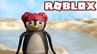 ROBLOX! I'VE TURNED INTO A PENGUIN! | Amy Lee33