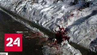 Смотреть видео Убийство народного целителя в Москве было местью за смерть пациентки онлайн