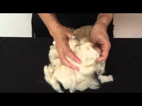 Kapok fiber explained