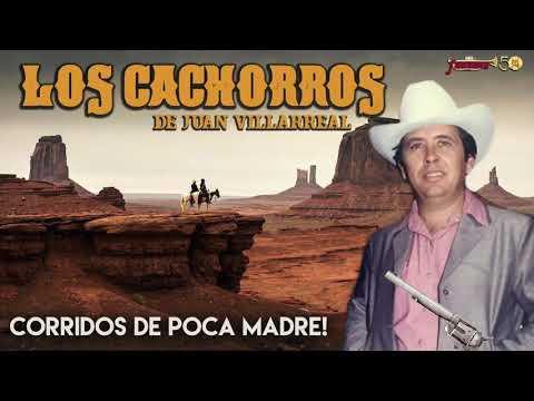 Los Cachorros De Juan Villarreal - Corridos De Poca Madre!