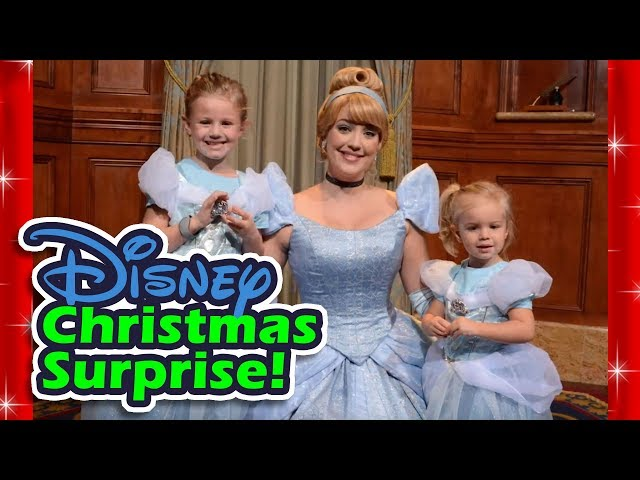 Disney Christmas Surprise!